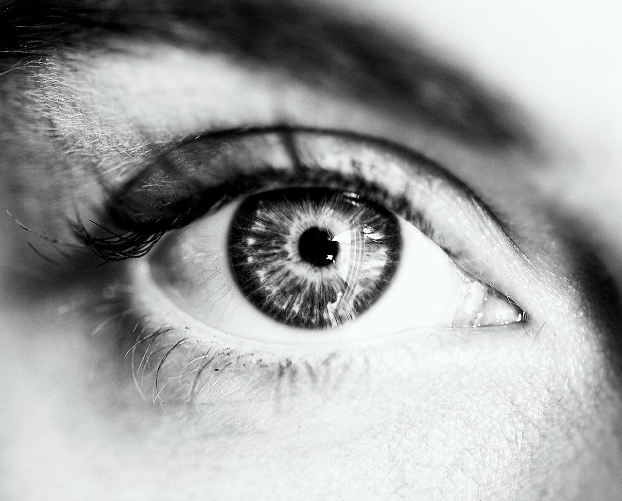 LYNR IMMOBILIENWERTE - PROJEKTENTWICKLUNG - OPTIMISMUS